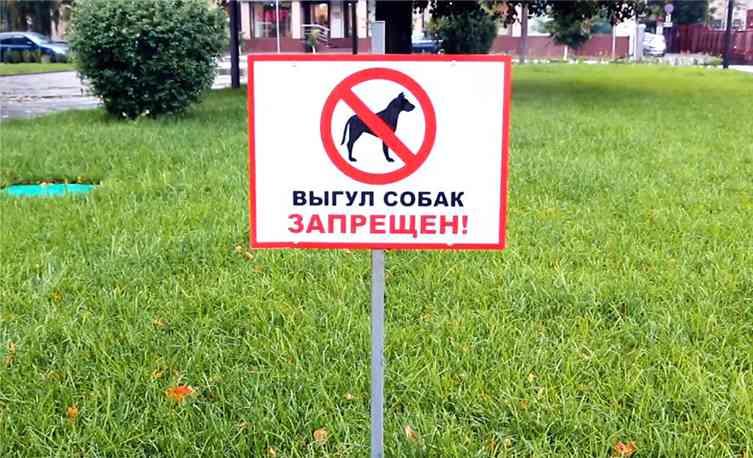Знак запрещающий выгул собак