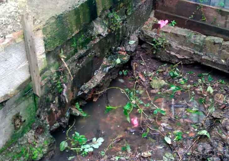 Соседи сливают канализацию мне в огород